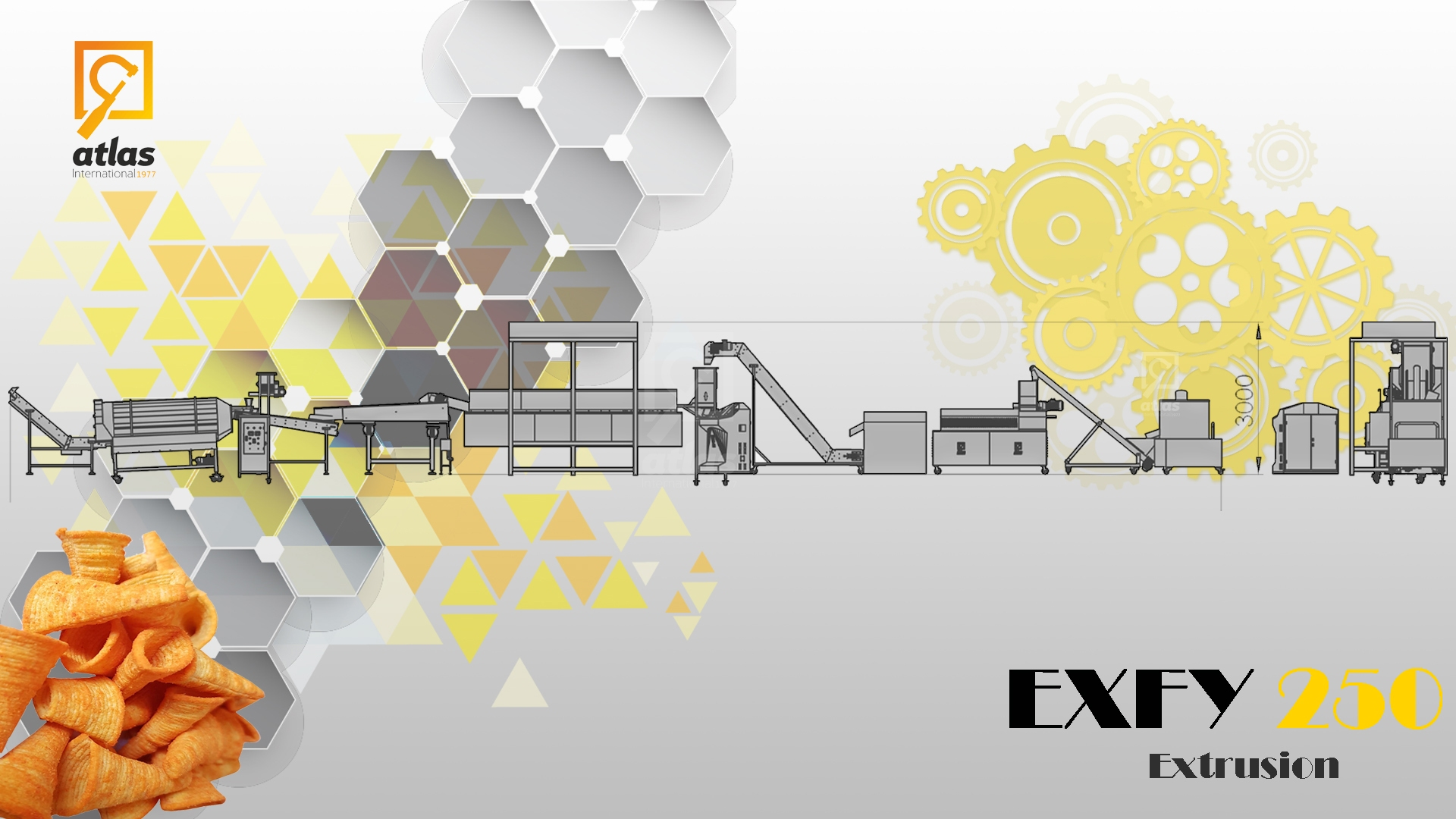 EXFY 250  Hat  Chips Production line